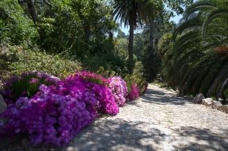 Tuin van Monserrate